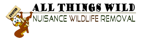 ALL THINGS WILD - Nuisance Wildlife Removal
